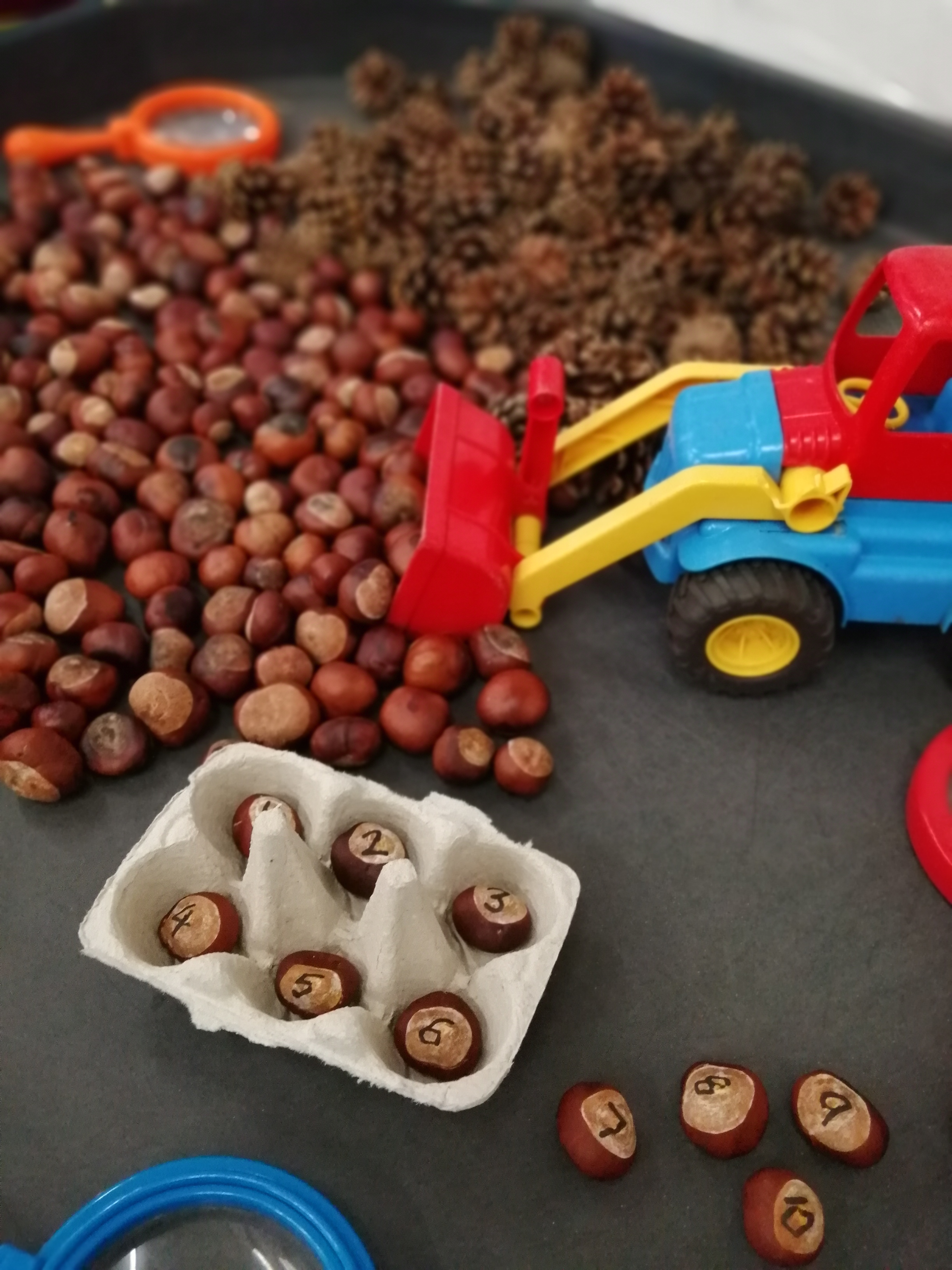 Bonkers-for-conkers