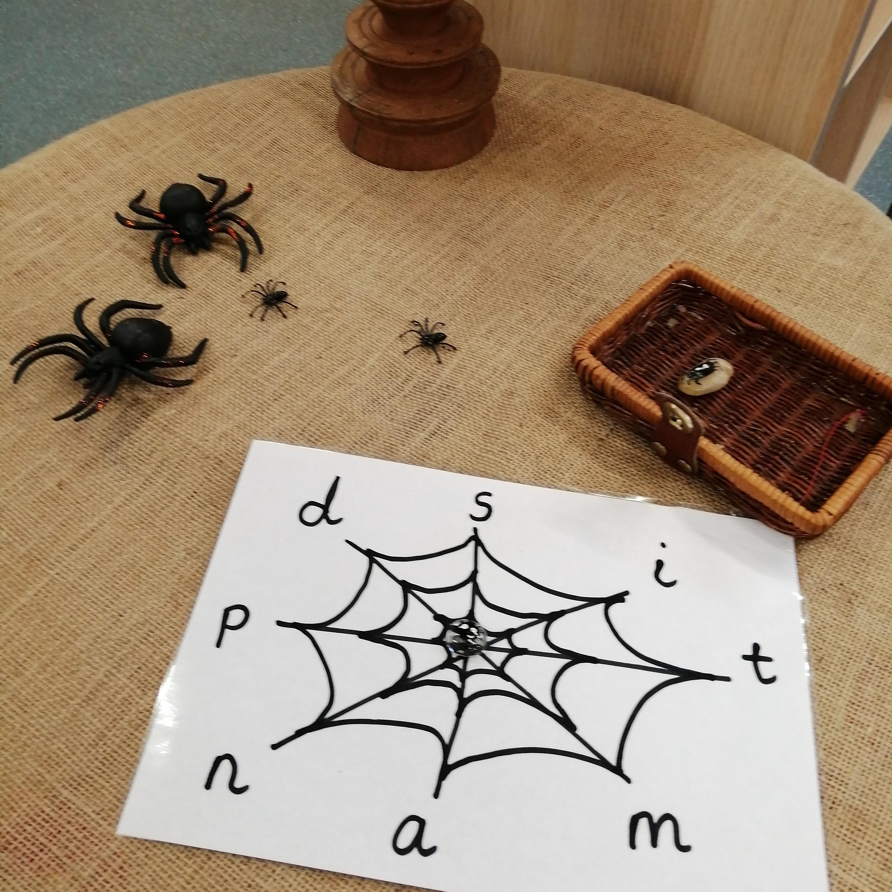 Spider-web-reading